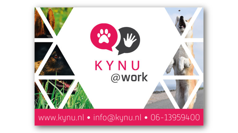 Flyer Kynu @ Work