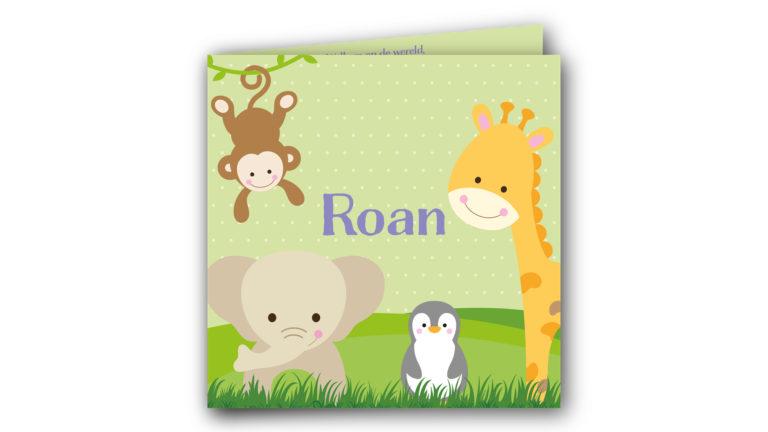 Geboortekaart Roan