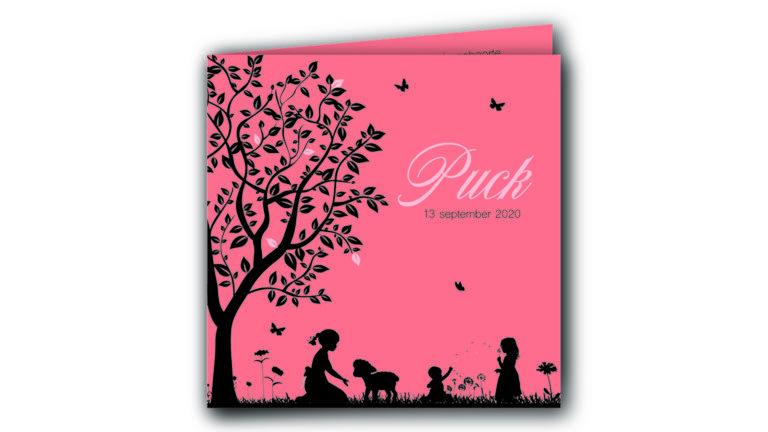 Geboortekaart Puck