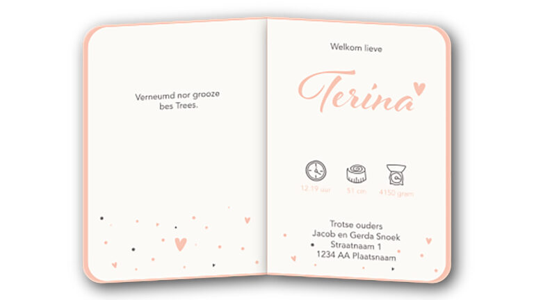 Geboortekaart Terina